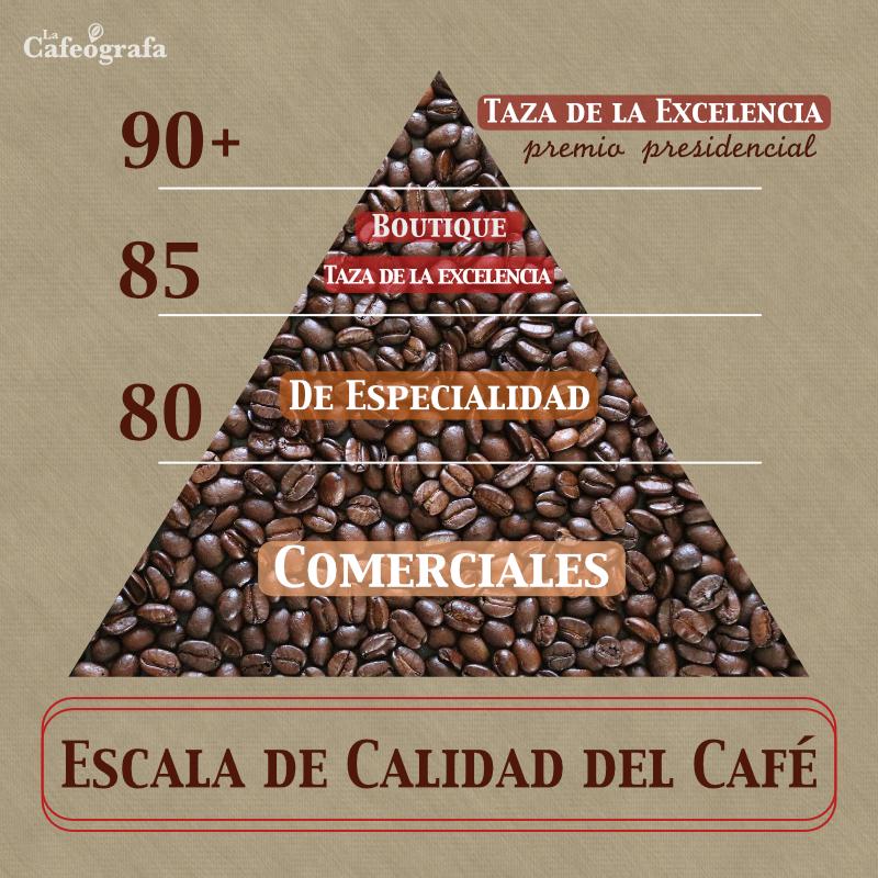 EscalaCalidad (1)