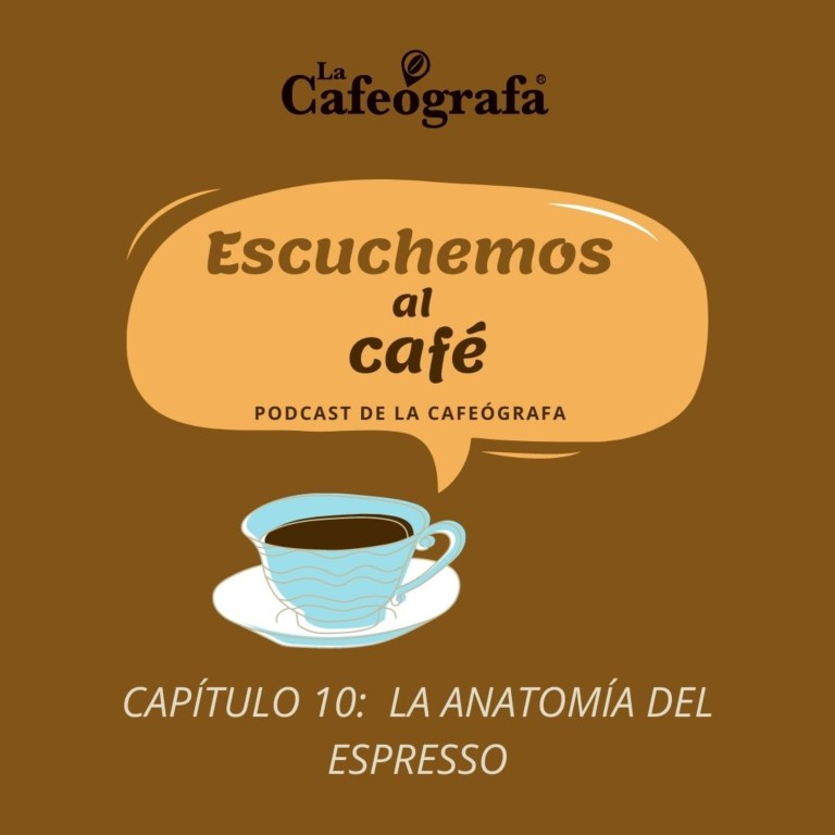 Escuchemos al café | Capítulo 10 | La anatomía del espresso